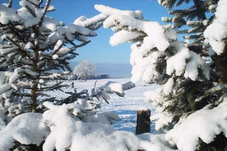 Blick aus unseren Garten auf die verschneite Weide unseres Nachbarn